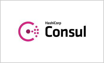 3-Consul